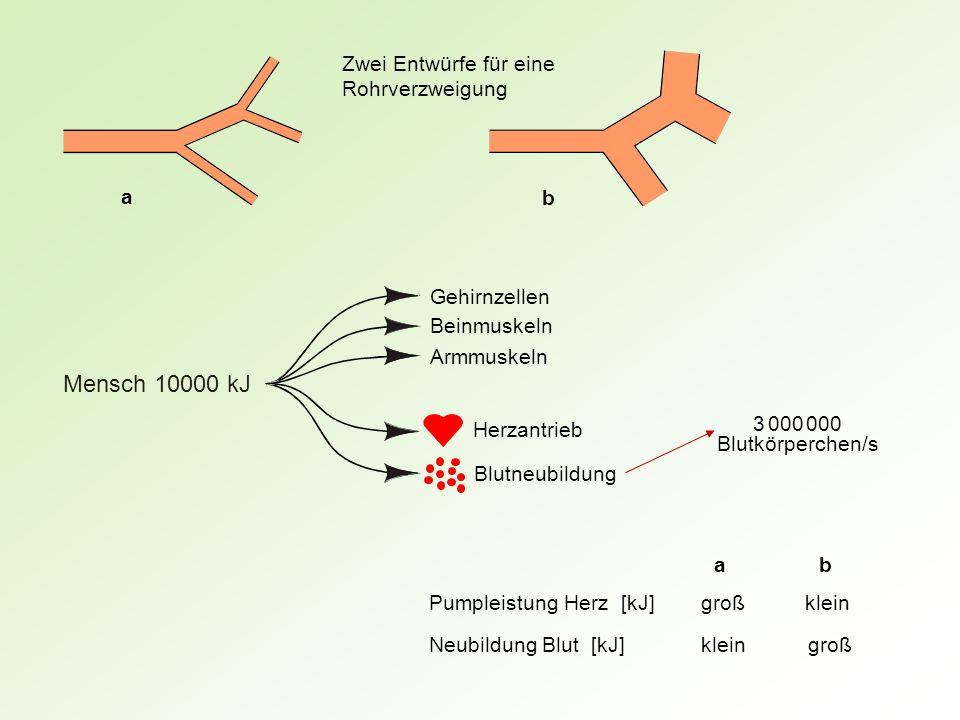 Dumme Gärtner Schlaue Gärtner g v v b für g g g b Eingesparte Strecke Hinzugefügte Strecke