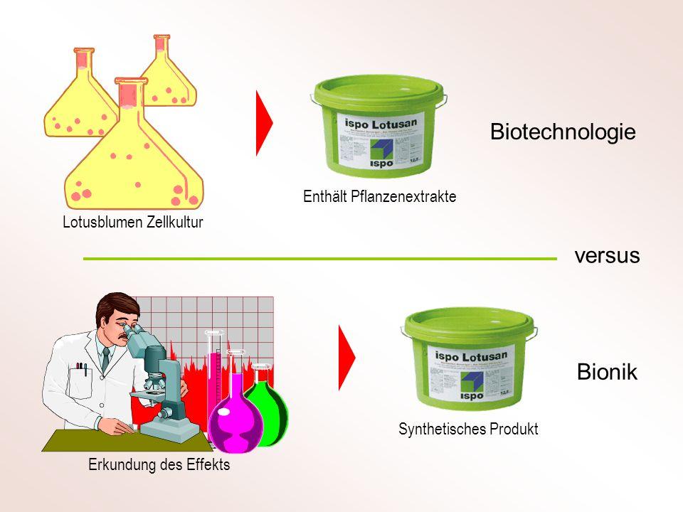 Biotechnologie Bionik versus Lotusblumen Zellkultur Erkundung des Effekts Enthält Pflanzenextrakte Synthetisches Produkt