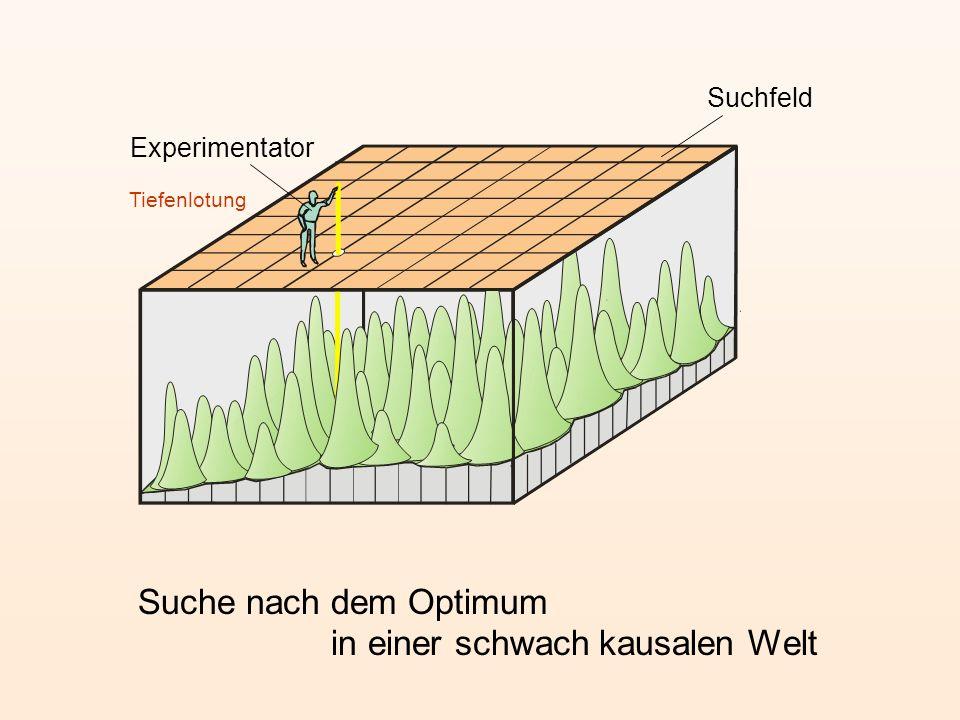 Experimentator Tiefenlotung Suchfeld Suche nach dem Optimum in einer schwach kausalen Welt