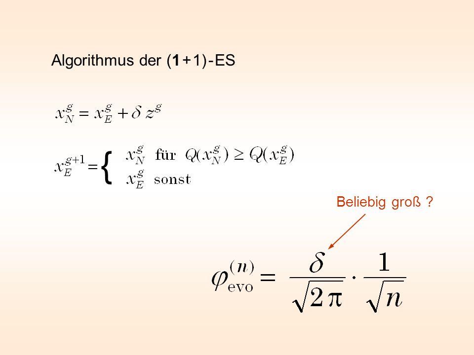 Algorithmus der (1 + 1) - ES { Beliebig groß ?