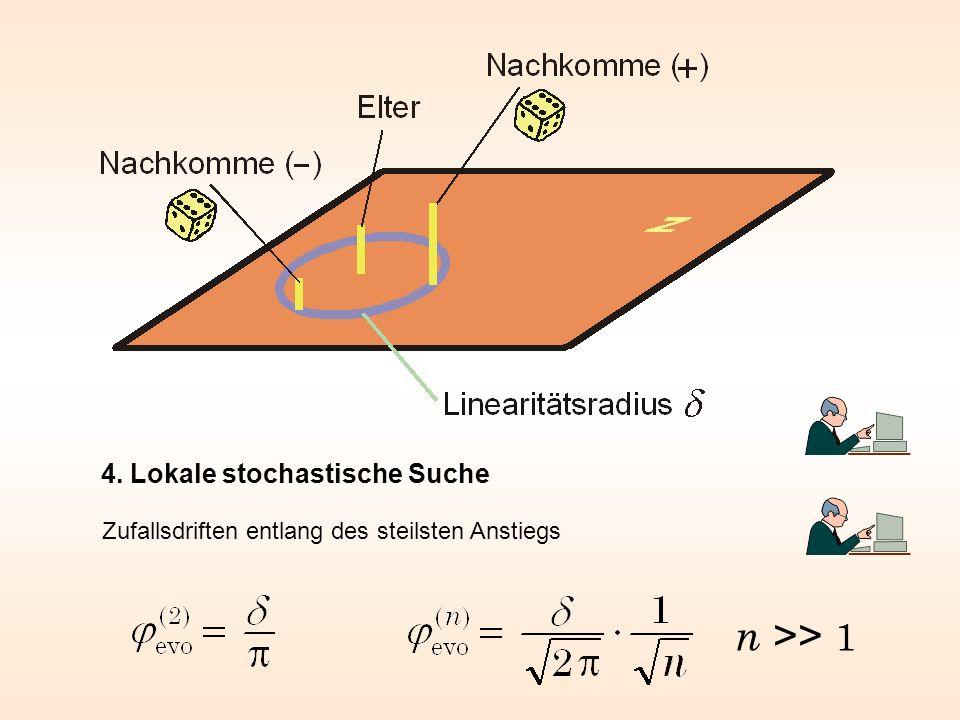 4. Lokale stochastische Suche Zufallsdriften entlang des steilsten Anstiegs n >> 1