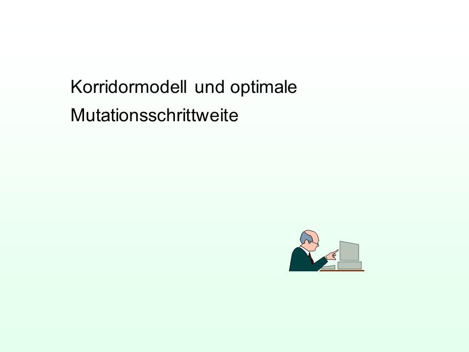 Korridormodell und optimale Mutationsschrittweite