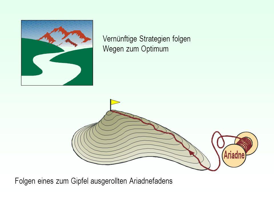 Folgen eines zum Gipfel ausgerollten Ariadnefadens Vernünftige Strategien folgen Wegen zum Optimum