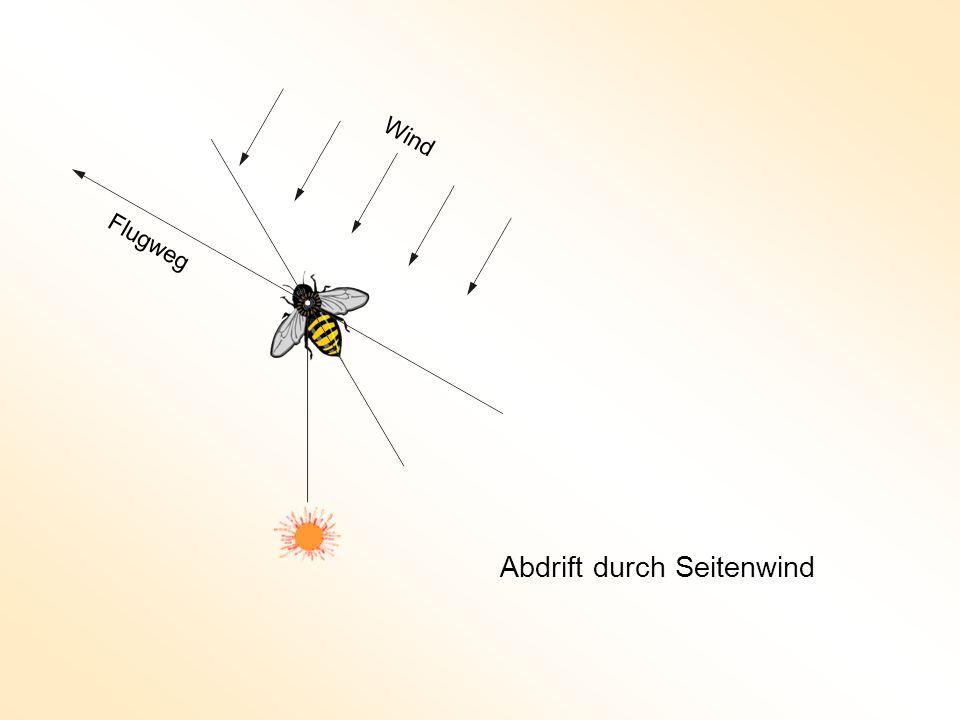 Wind Flugweg Abdrift durch Seitenwind