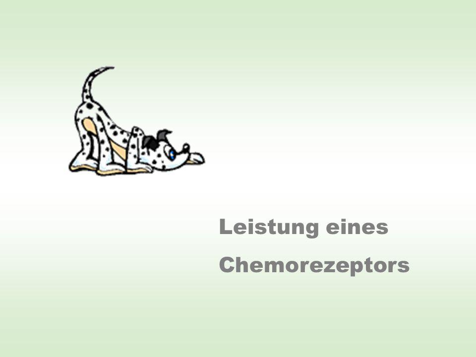 Inhalt der Nase des 12,4 cm langen Versuchsaals: 0,30 mm 3 Rechnerisch befindet sich im Aalnasenvolumen nur 0,53 Molekül Einmoleküldetektion