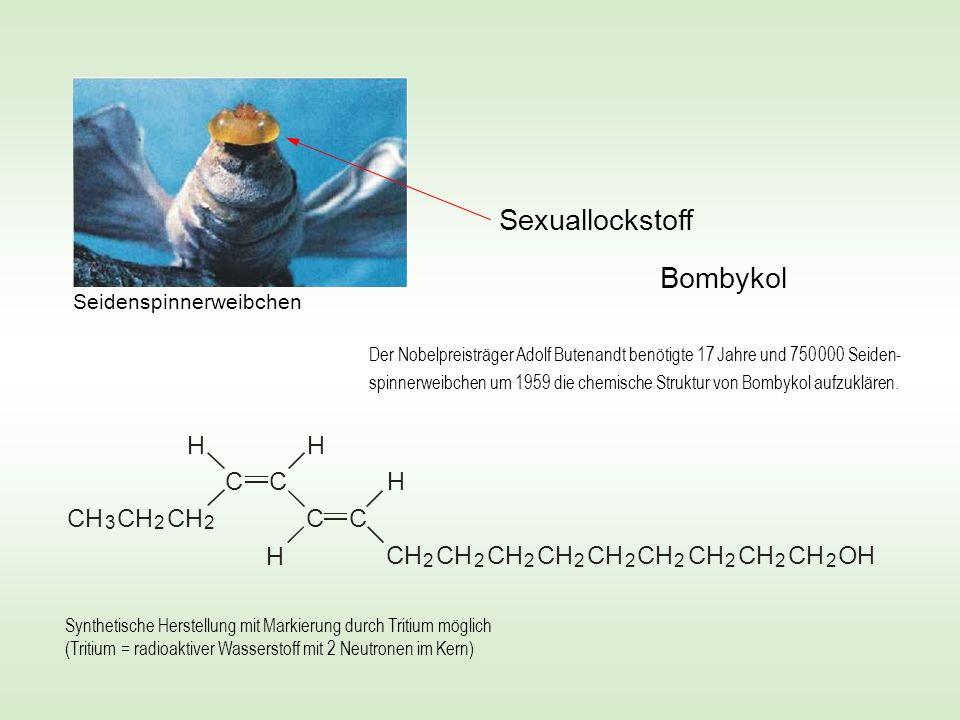 CH 2 C 2 2 2 2 2 2 2 2 2 OH CH 2 3 C CC H HH H Bombykol Sexuallockstoff Synthetische Herstellung mit Markierung durch Tritium möglich (Tritium = radio
