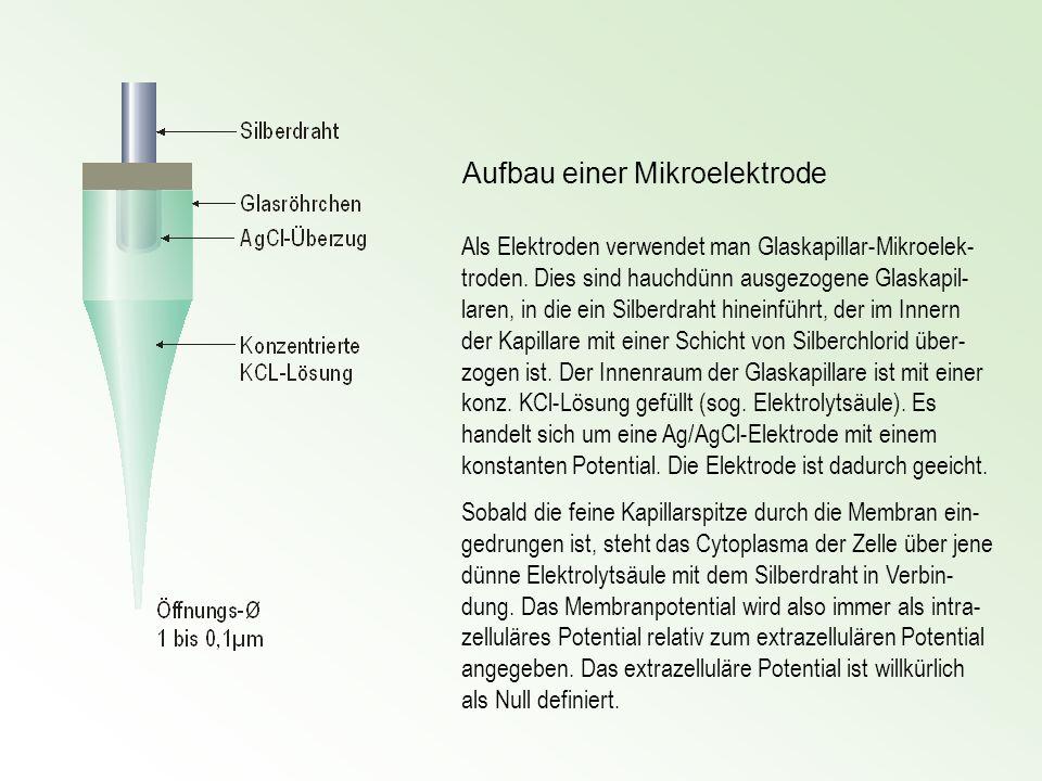 Als Elektroden verwendet man Glaskapillar-Mikroelek- troden. Dies sind hauchdünn ausgezogene Glaskapil- laren, in die ein Silberdraht hineinführt, der