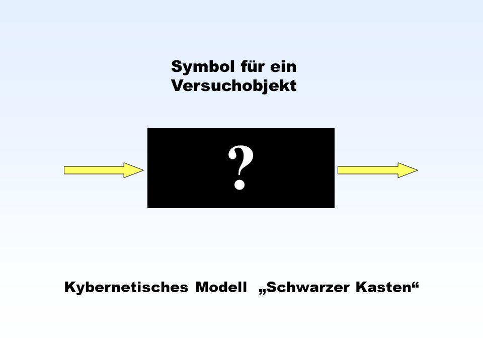 Kybernetisches Modell Schwarzer Kasten Symbol für ein Versuchobjekt