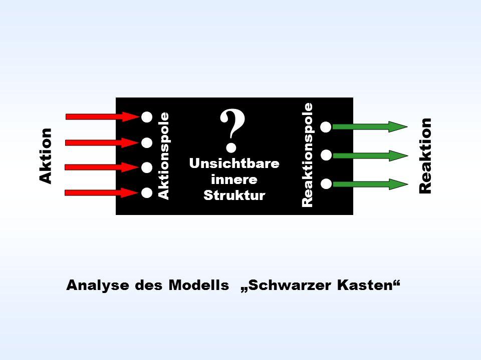 Analyse des Modells Schwarzer Kasten .