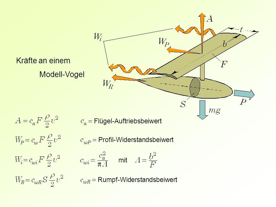 = Flügel-Auftriebsbeiwert = Profil-Widerstandsbeiwert Kräfte an einem Modell-Vogel = Rumpf-Widerstandsbeiwert mit