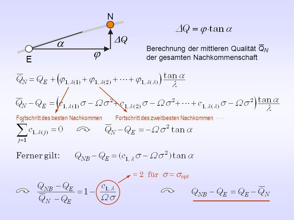 E N Q Ferner gilt: = 2 für opt Berechnung der mittleren Qualität Q N der gesamten Nachkommenschaft Fortschritt des besten Nachkommen Fortschritt des z