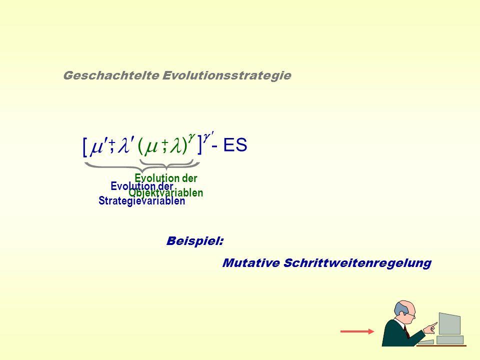 ( ) - ES +, Geschachtelte Evolutionsstrategie +, [ ] Evolution der Objektvariablen Evolution der Strategievariablen Beispiel: Mutative Schrittweitenre