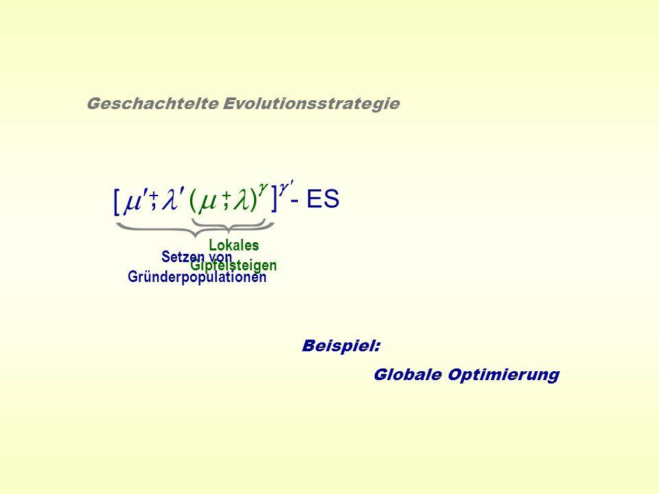 ( ) - ES +, Geschachtelte Evolutionsstrategie +, [ ] Lokales Gipfelsteigen Setzen von Gründerpopulationen Beispiel: Globale Optimierung