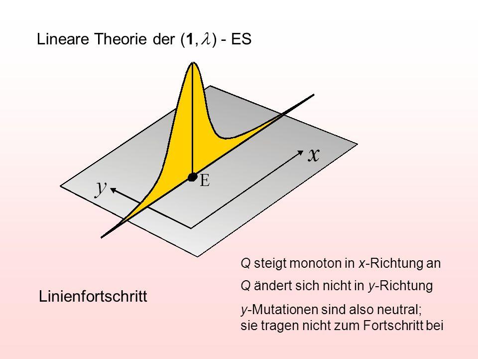 Lineare Theorie der (1, ) - ES Linienfortschritt Q steigt monoton in x-Richtung an Q ändert sich nicht in y-Richtung y-Mutationen sind also neutral; s