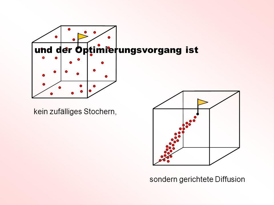 kein zufälliges Stochern, sondern gerichtete Diffusion und der Optimierungsvorgang ist