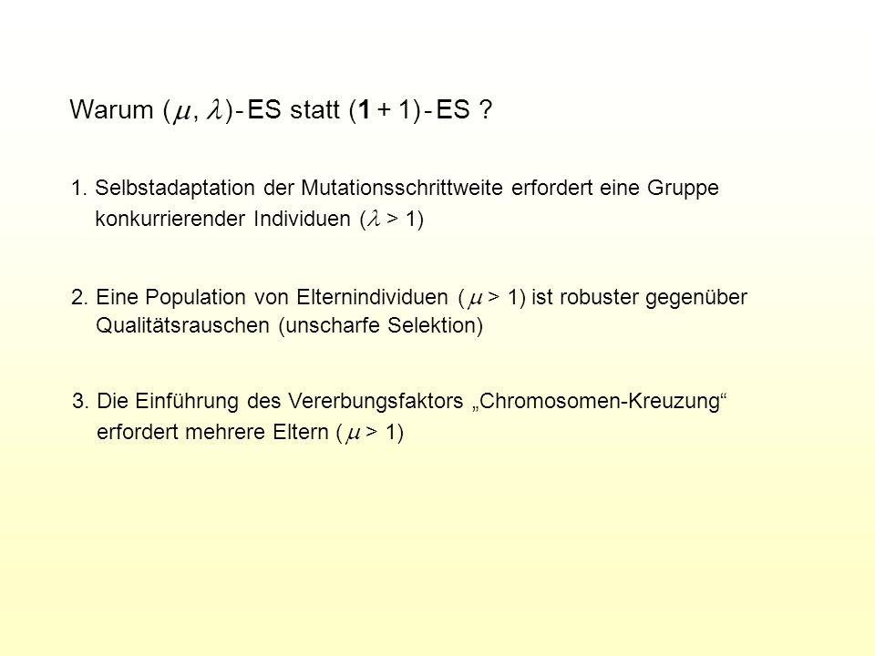 Warum (, ) - ES statt (1 + 1) - ES ? 1. Selbstadaptation der Mutationsschrittweite erfordert eine Gruppe konkurrierender Individuen ( > 1) 3. Die Einf