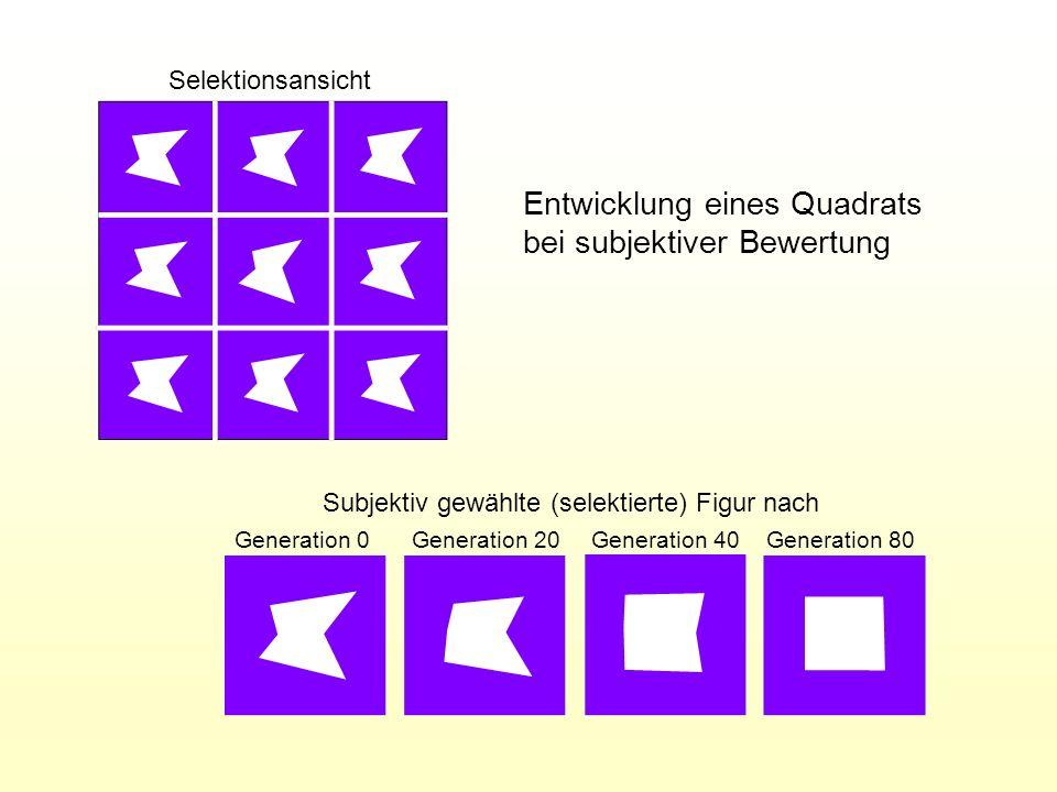Selektionsansicht Subjektiv gewählte (selektierte) Figur nach Generation 0 Generation 20 Generation 40Generation 80 Entwicklung eines Quadrats bei sub