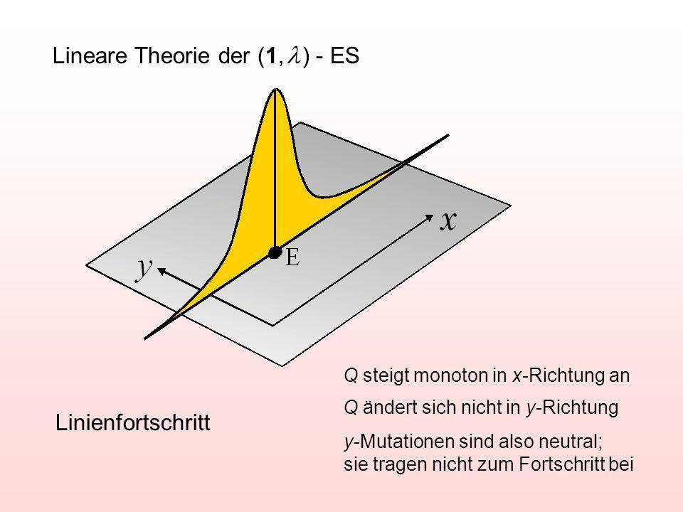 Lineare Theorie der (1, ) - ES Linienfortschritt Q steigt monoton in x-Richtung an Q ändert sich nicht in y-Richtung y-Mutationen sind also neutral; sie tragen nicht zum Fortschritt bei