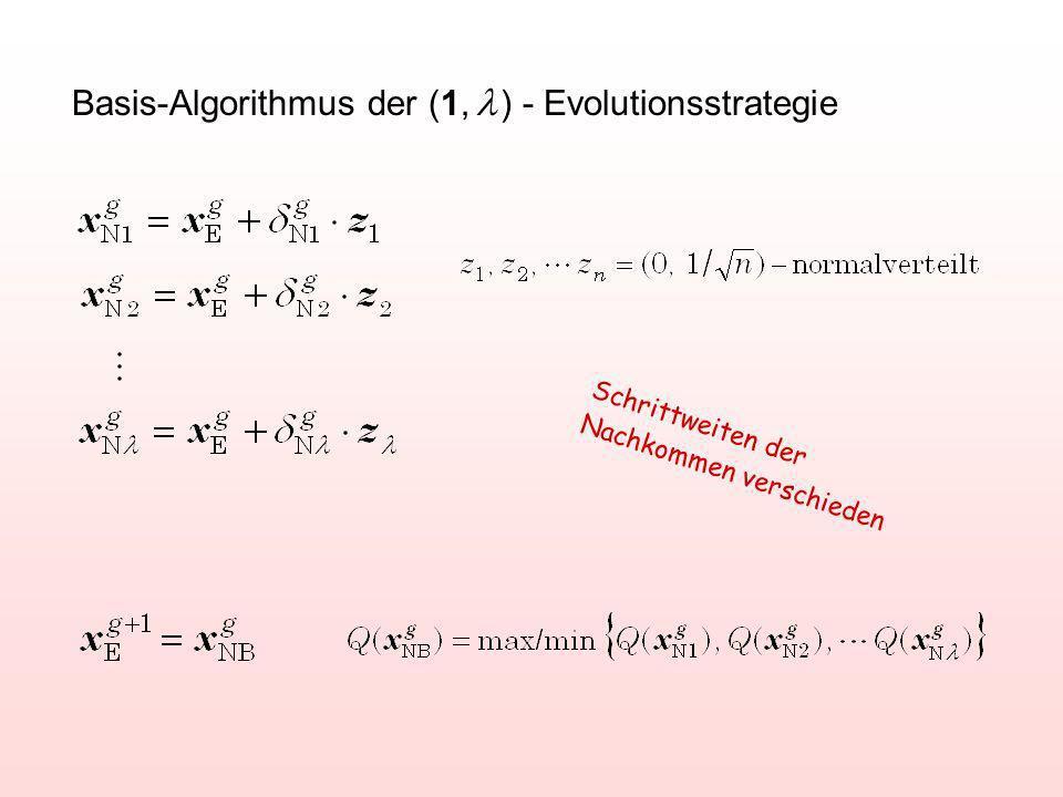 Basis-Algorithmus der (1, ) - Evolutionsstrategie Schrittweiten der Nachkommen verschieden