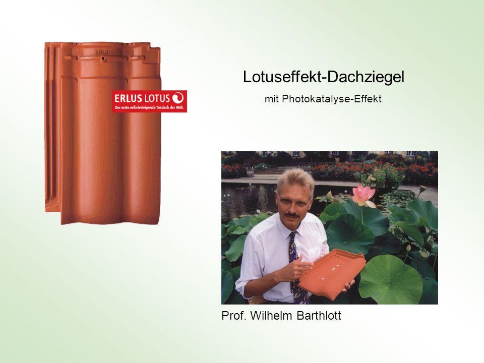 Prof. Wilhelm Barthlott Lotuseffekt-Dachziegel mit Photokatalyse-Effekt