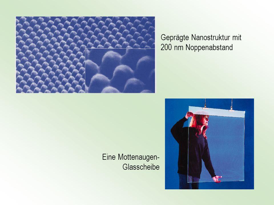 Geprägte Nanostruktur mit 200 nm Noppenabstand Eine Mottenaugen- Glasscheibe