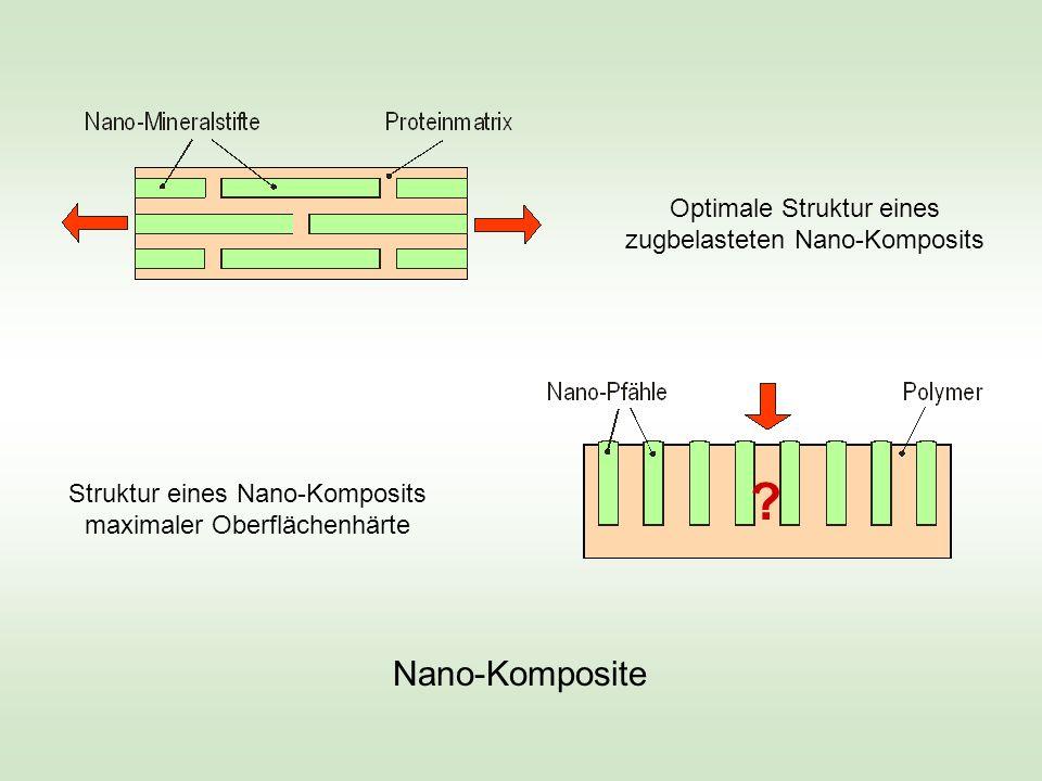 Optimale Struktur eines zugbelasteten Nano-Komposits Struktur eines Nano-Komposits maximaler Oberflächenhärte Nano-Komposite ?