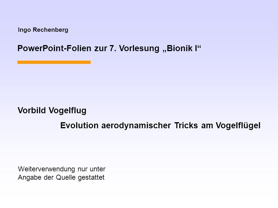 Ingo Rechenberg PowerPoint-Folien zur 7. Vorlesung Bionik I Vorbild Vogelflug Evolution aerodynamischer Tricks am Vogelflügel Weiterverwendung nur unt