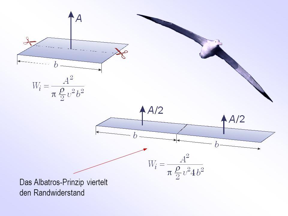Das Albatros-Prinzip viertelt den Randwiderstand