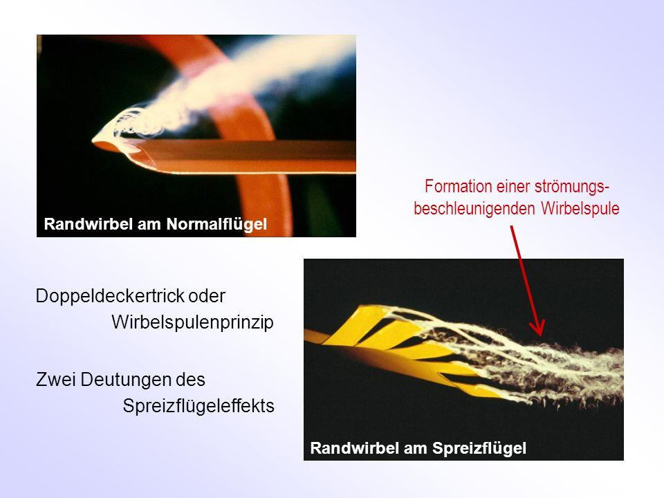Randwirbel am Normalflügel Randwirbel am Spreizflügel Formation einer strömungs- beschleunigenden Wirbelspule Doppeldeckertrick oder Wirbelspulenprinzip Zwei Deutungen des Spreizflügeleffekts