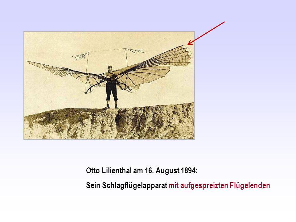 Otto Lilienthal am 16. August 1894: Sein Schlagflügelapparat mit aufgespreizten Flügelenden