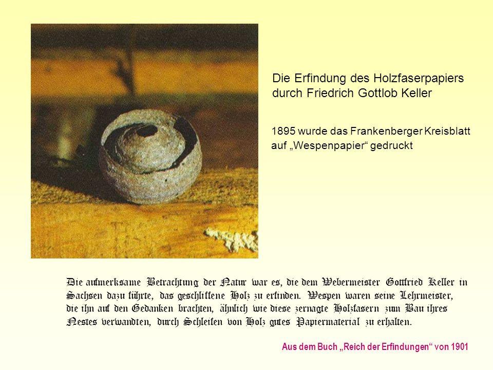 Die Erfindung des Holzfaserpapiers durch Friedrich Gottlob Keller 1895 wurde das Frankenberger Kreisblatt auf Wespenpapier gedruckt Die aufmerksame Be