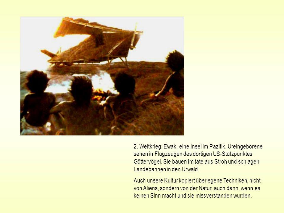 2. Weltkrieg: Ewak, eine Insel im Pazifik. Ureingeborene sehen in Flugzeugen des dortigen US-Stützpunktes Göttervögel. Sie bauen Imitate aus Stroh und