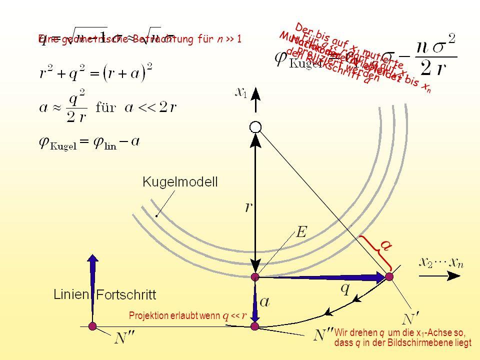 a Für q << r darf a auf x 1 projiziert werden Mutation der Variablen x 2 bis x n Der bis auf x 1 mutierte Nachkomme N erleidet den Rückschritt a Eine geometrische Betrachtung für n >> 1 Projektion erlaubt wenn q << r Wir drehen q um die x 1 -Achse so, dass q in der Bildschirmebene liegt