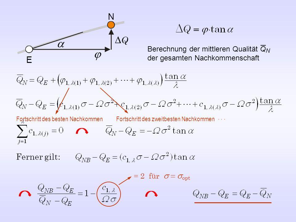 E N Q Ferner gilt: = 2 für opt Berechnung der mittleren Qualität Q N der gesamten Nachkommenschaft Fortschritt des besten Nachkommen Fortschritt des zweitbesten Nachkommen...