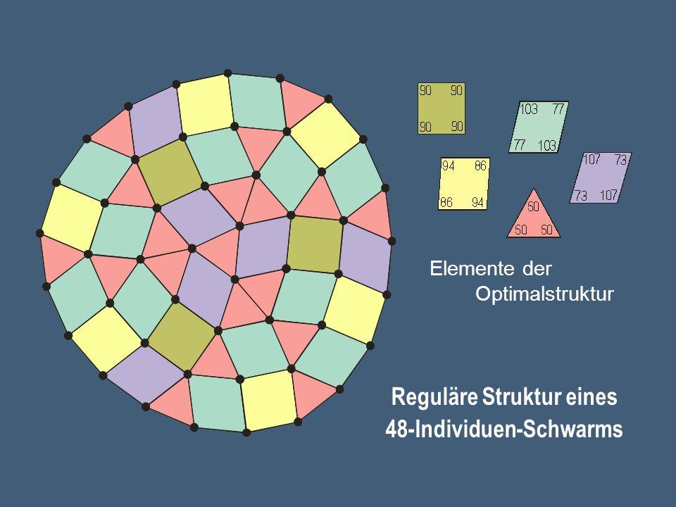 Elemente der Optimalstruktur Reguläre Struktur eines 48-Individuen-Schwarms