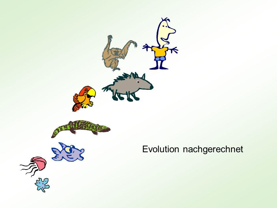 Evolution nachgerechnet