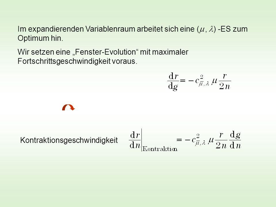 Im expandierenden Variablenraum arbeitet sich eine (, ) -ES zum Optimum hin. Wir setzen eine Fenster-Evolution mit maximaler Fortschrittsgeschwindigke