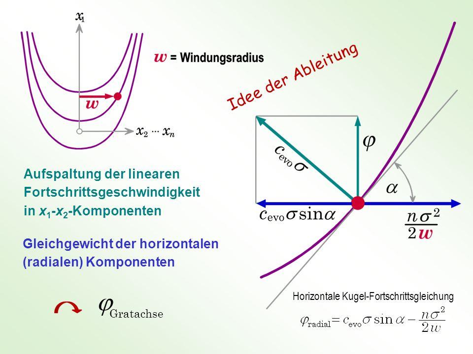 Aufspaltung der linearen Fortschrittsgeschwindigkeit in x 1 -x 2 -Komponenten Gleichgewicht der horizontalen (radialen) Komponenten Gratachse Horizontale Kugel-Fortschrittsgleichung Idee der Ableitung
