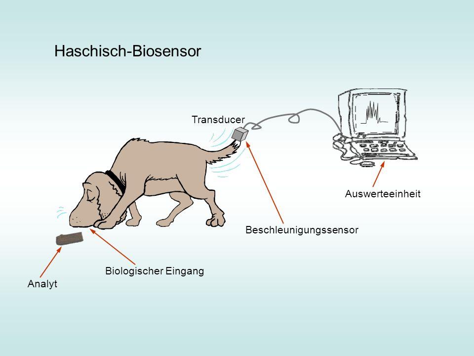 Haschisch-Biosensor Analyt Beschleunigungssensor Auswerteeinheit Biologischer Eingang Transducer