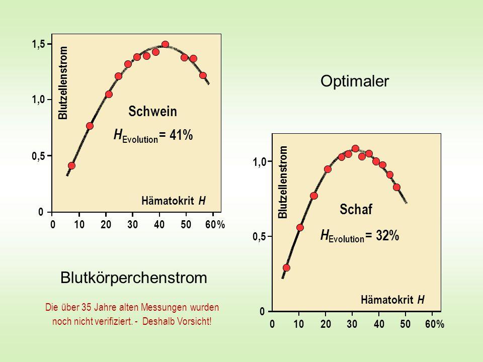 Optimaler Blutkörperchenstrom Schwein H = 41% Evolution Hämatokrit H 1,5 1,0 0,5 0 %0 10 30 20406050 B l u t z e l l e n s t r o m % Schaf H = 32% Evo