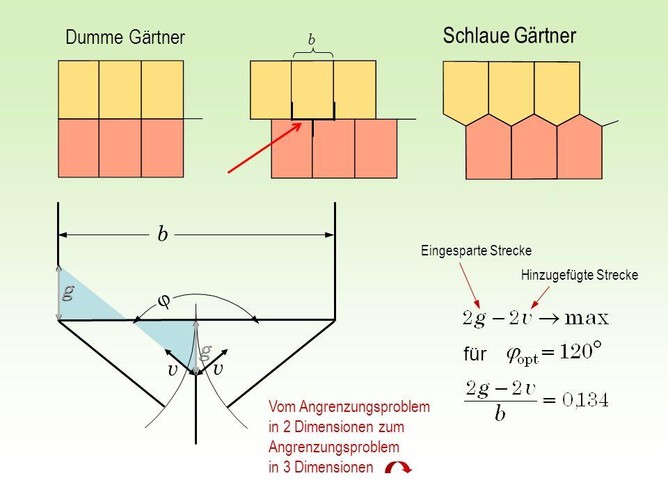 Dumme Gärtner Schlaue Gärtner g v v b für g g g b Eingesparte Strecke Hinzugefügte Strecke Vom Angrenzungsproblem in 2 Dimensionen zum Angrenzungsprob