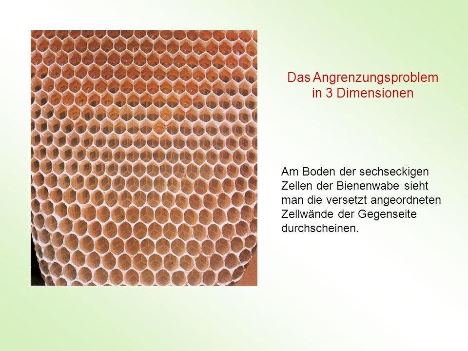 Am Boden der sechseckigen Zellen der Bienenwabe sieht man die versetzt angeordneten Zellwände der Gegenseite durchscheinen. Das Angrenzungsproblem in