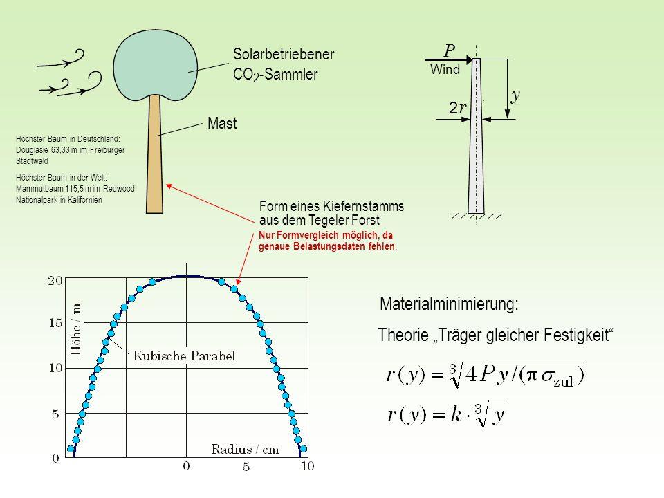 2 r2 r y P Theorie Träger gleicher Festigkeit Form eines Kiefernstamms aus dem Tegeler Forst Solarbetriebener CO 2 -Sammler Mast Materialminimierung: