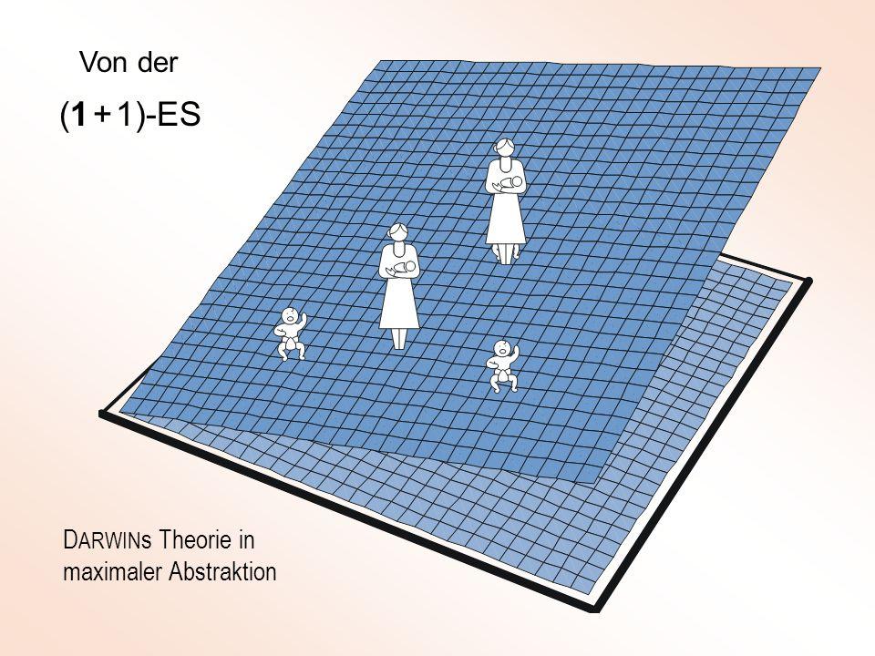 Basis-Algorithmus der (1, ) - Evolutionsstrategie Schrittweiten der Nachkommen verschieden (Keimzellen eines Elters !)