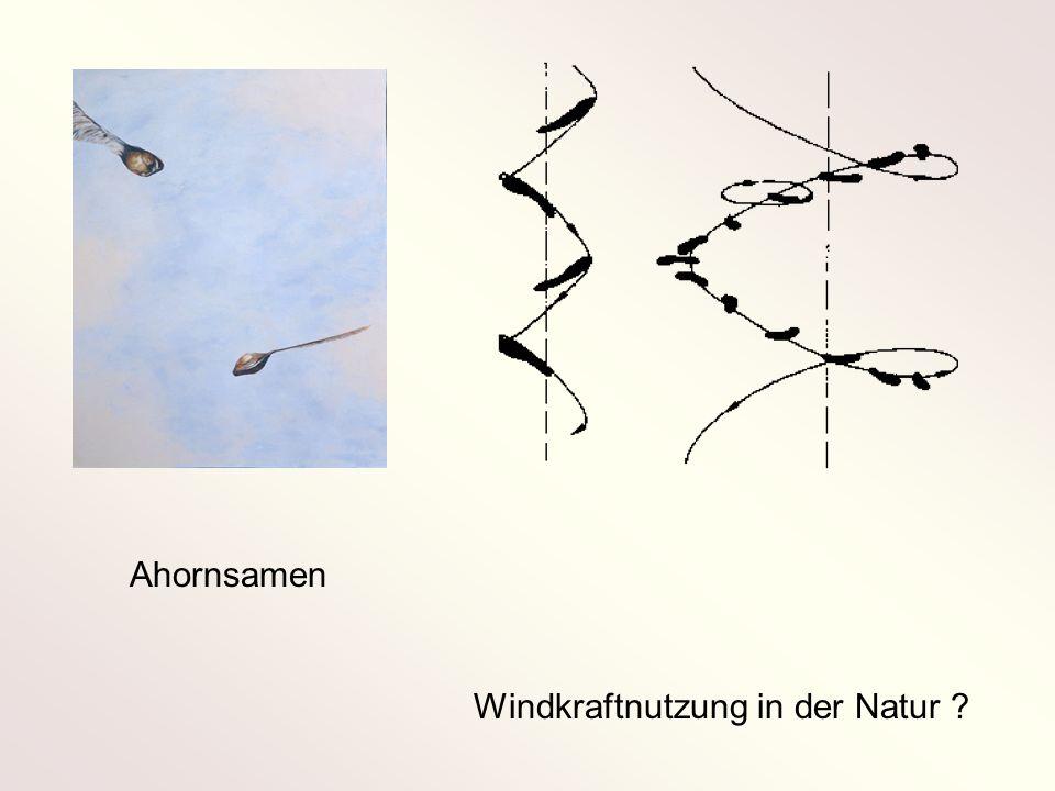 Wellenmodell der doppelten Wirbelschichtspule Kinematische Bedingungen Randbedingungen Wirbelbedingungen 1 2 3 4 BERWIAN -Theorie