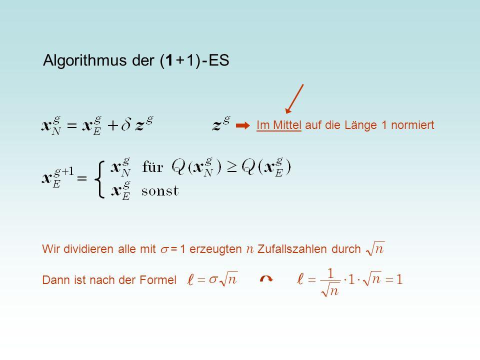 Algorithmus der (1 + 1) - ES Im Mittel auf die Länge 1 normiert Wir dividieren alle mit = 1 erzeugten n Zufallszahlen durch n Dann ist nach der Formel
