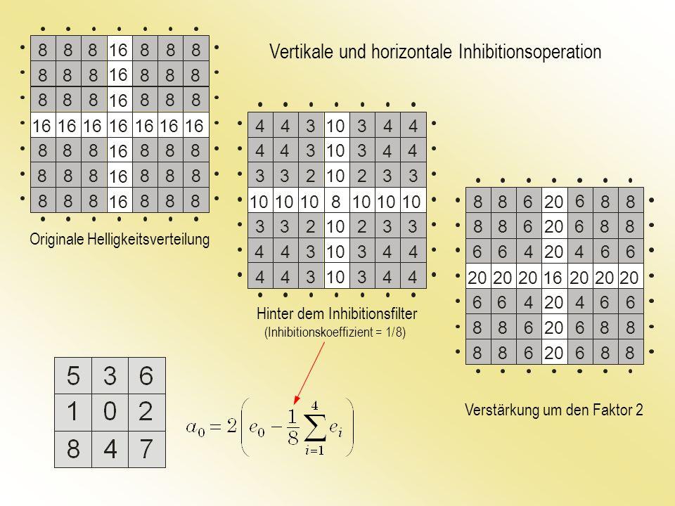 Vertikale und horizontale Inhibitionsoperation Originale Helligkeitsverteilung Hinter dem Inhibitionsfilter Verstärkung um den Faktor 2 (Inhibitionsko