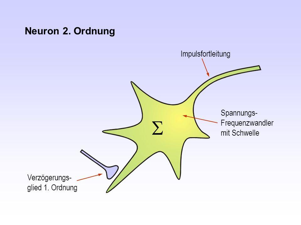 Neuron 2. Ordnung Impulsfortleitung Spannungs- Frequenzwandler mit Schwelle Verzögerungs- glied 1. Ordnung