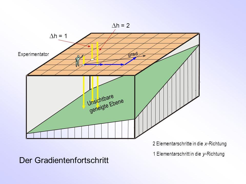 grad h = 1 h = 2 Der Gradientenfortschritt Unsichtbare geneigte Ebene 2 Elementarschritte in die x -Richtung 1 Elementarschritt in die y -Richtung Exp