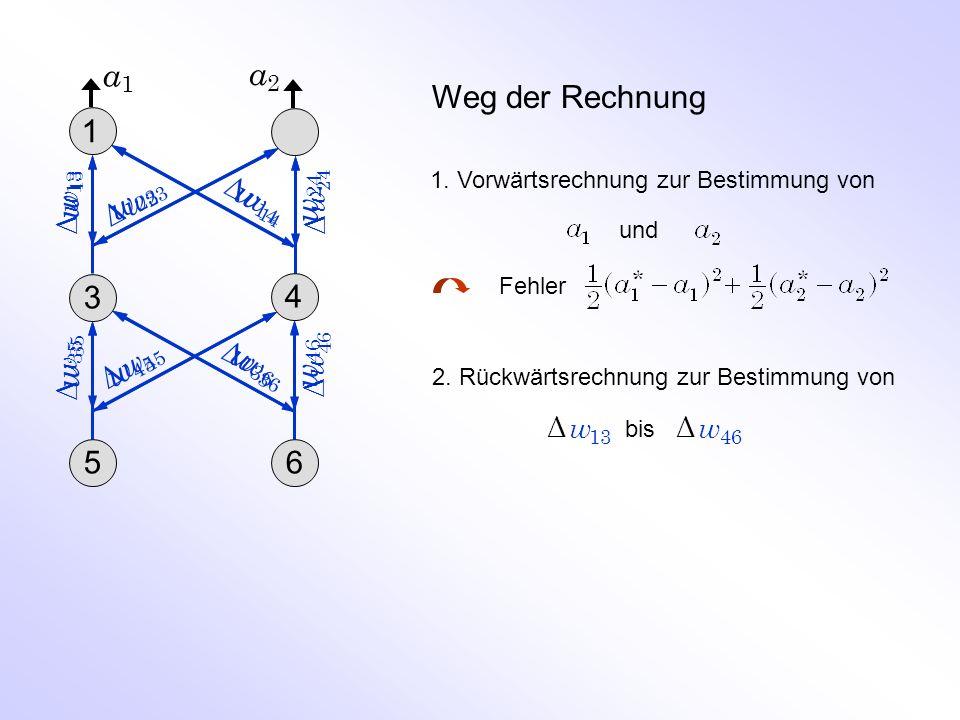 Weg der Rechnung 1.Vorwärtsrechnung zur Bestimmung von und Fehler 2.